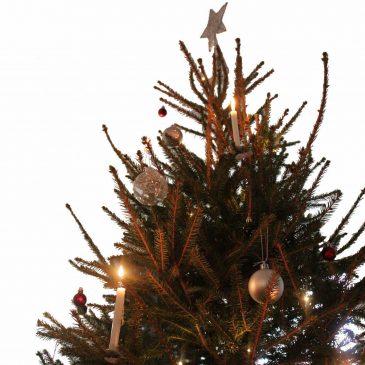 Oi kuusipuu – musiikkia eurooppalaiselta joulutorilta